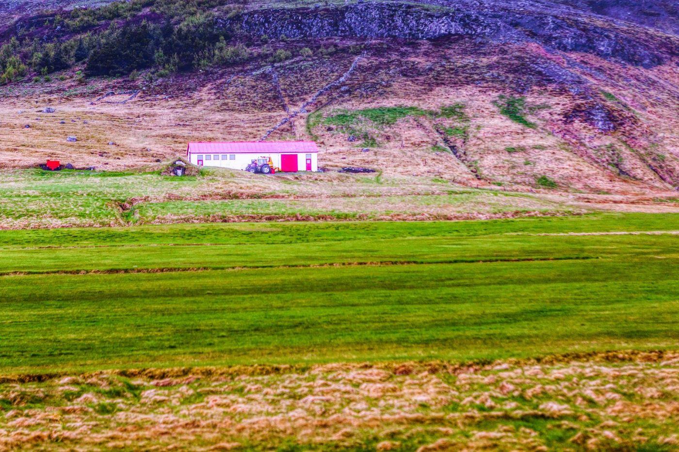 冰岛风采,大山民舍羊群_图1-30