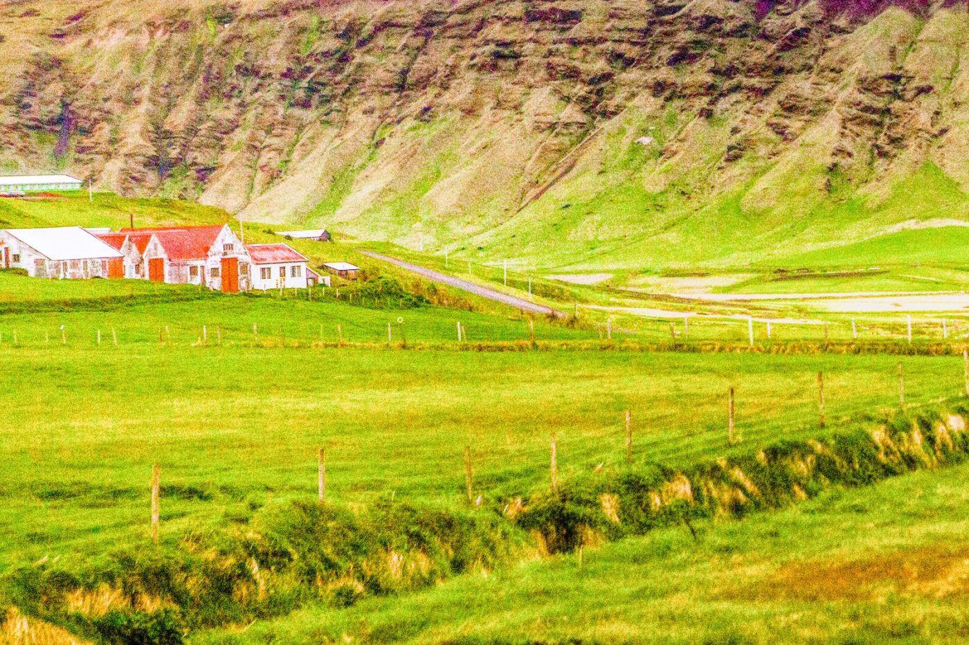 冰岛风采,大山民舍羊群_图1-34