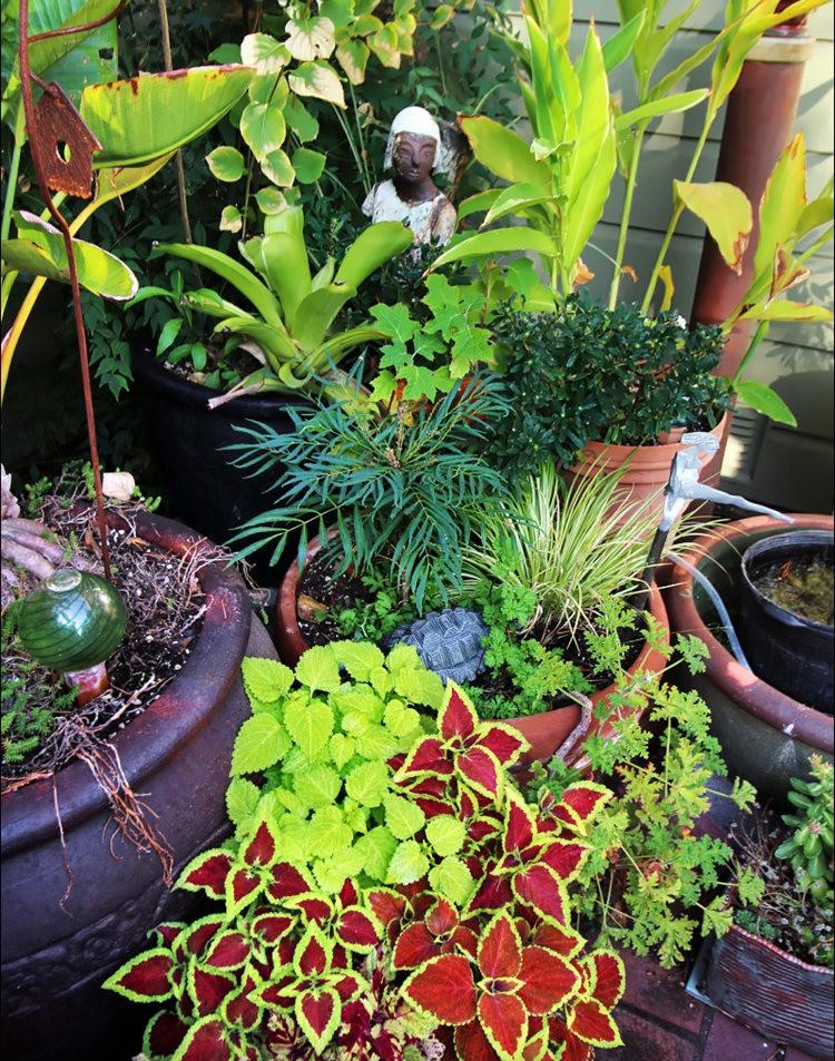 Ellen Frank Garden 花园_图1-16