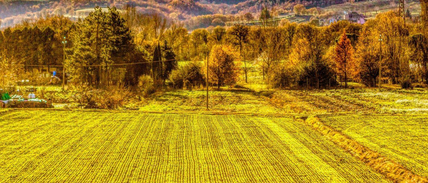 意大利路途,过往的景色_图1-29