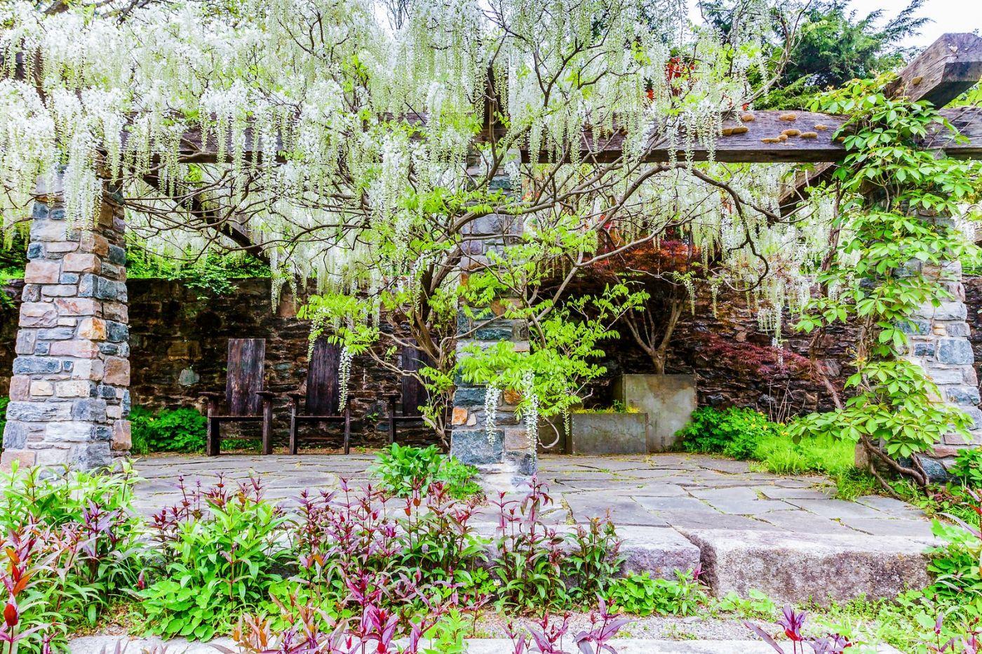 Chanticleer花园,期待春天_图1-4