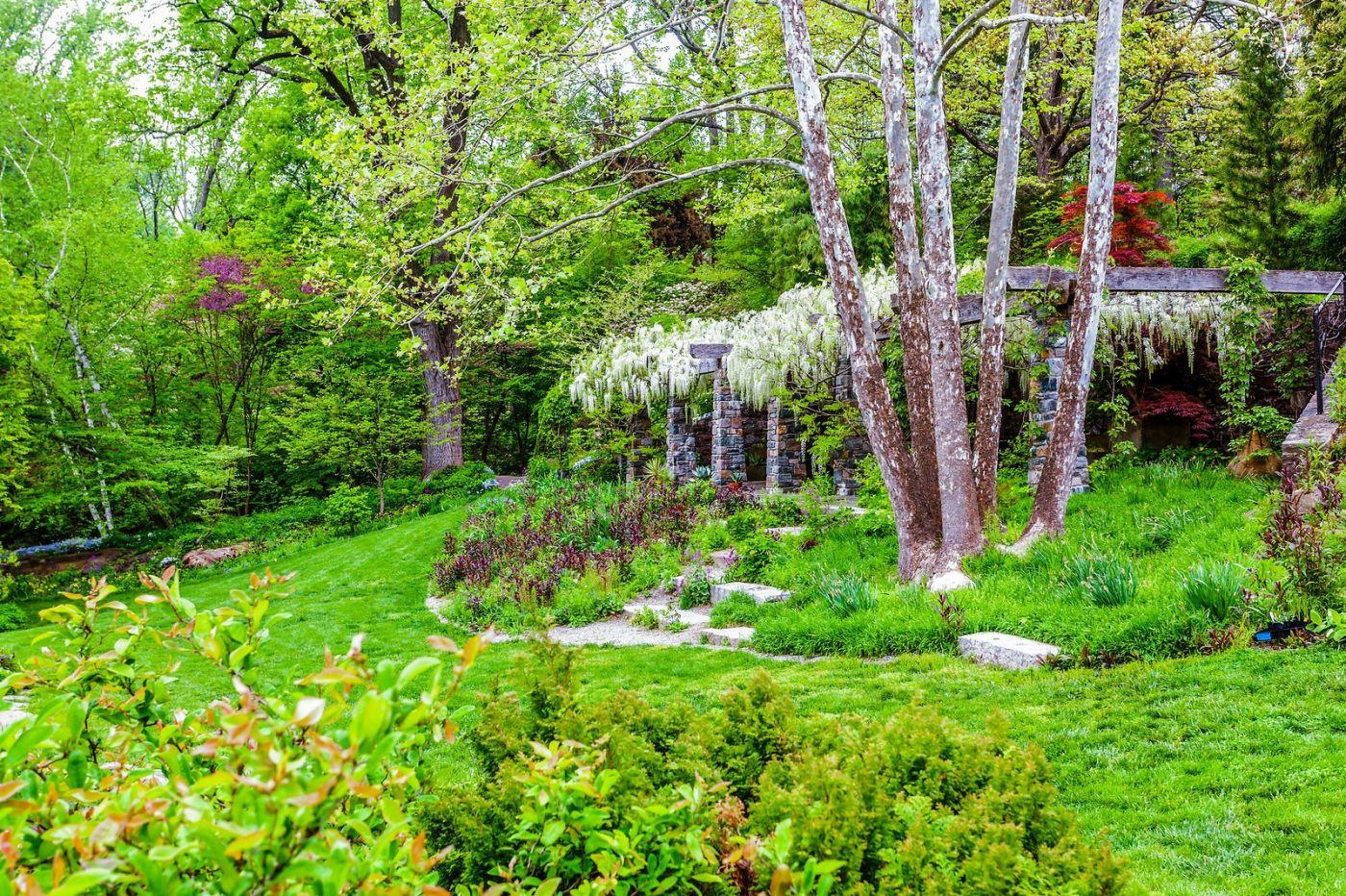 Chanticleer花园,期待春天_图1-16