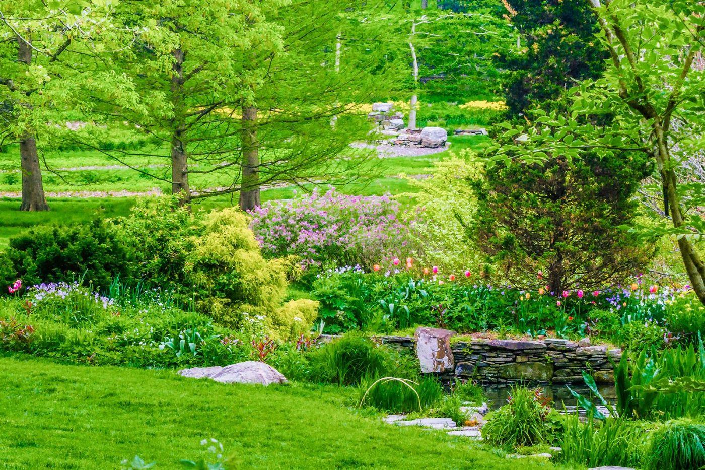 Chanticleer花园,期待春天_图1-19