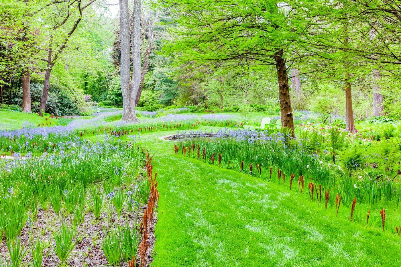 Chanticleer花园,期待春天_图1-22