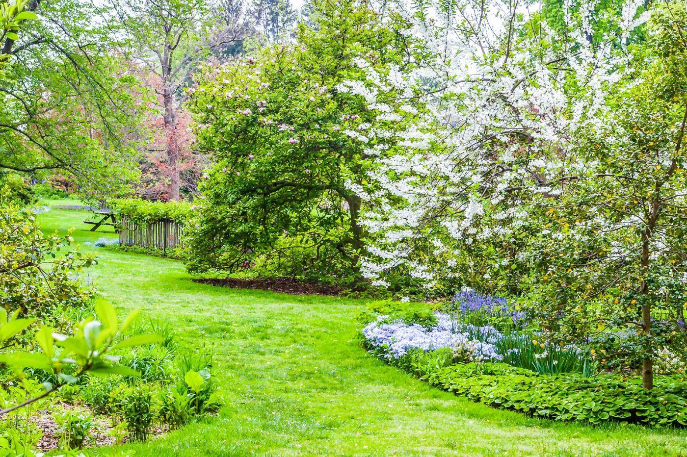 Chanticleer花园,期待春天_图1-21