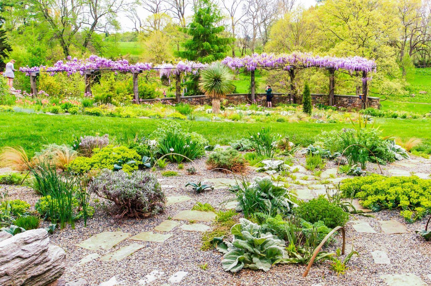 Chanticleer花园,期待春天_图1-28