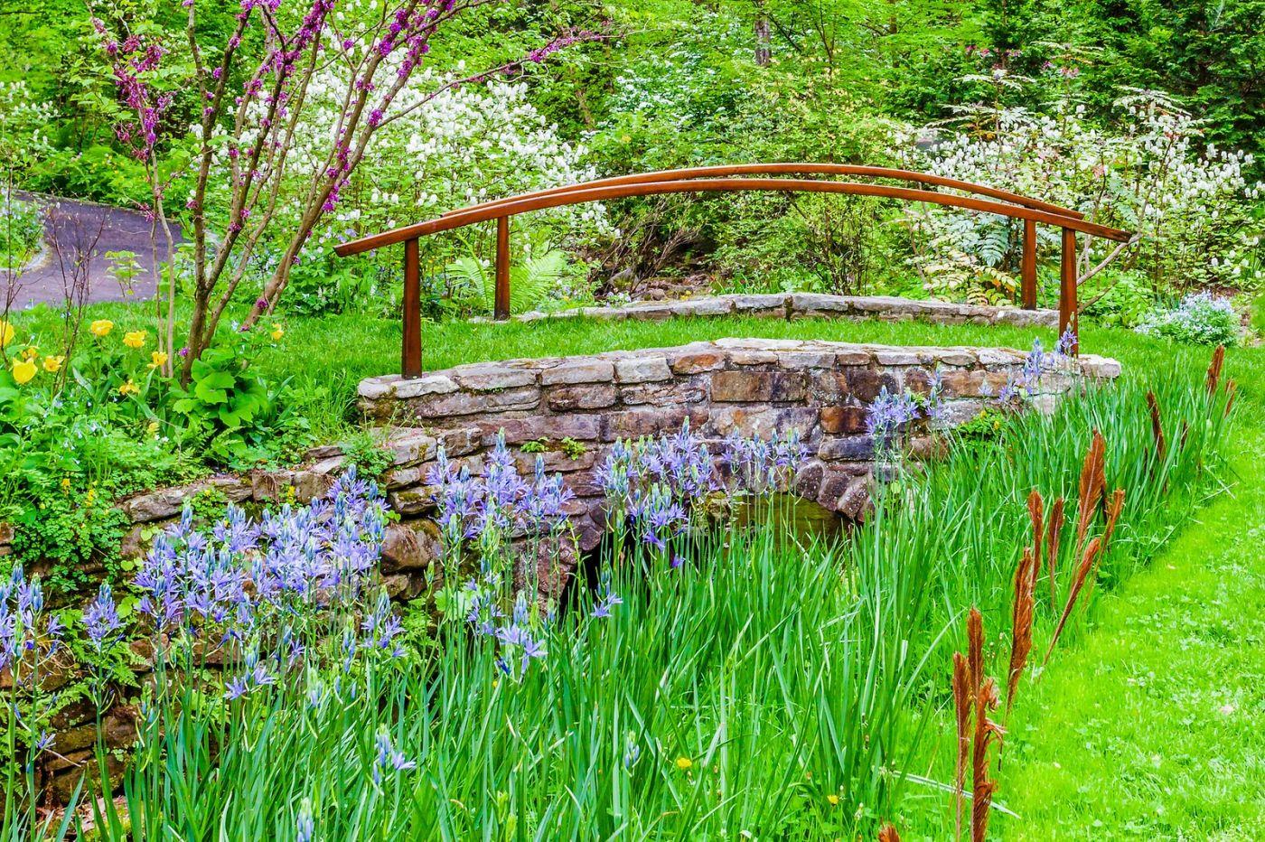 Chanticleer花园,期待春天_图1-24