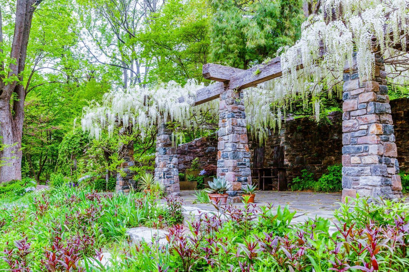 Chanticleer花园,期待春天_图1-31