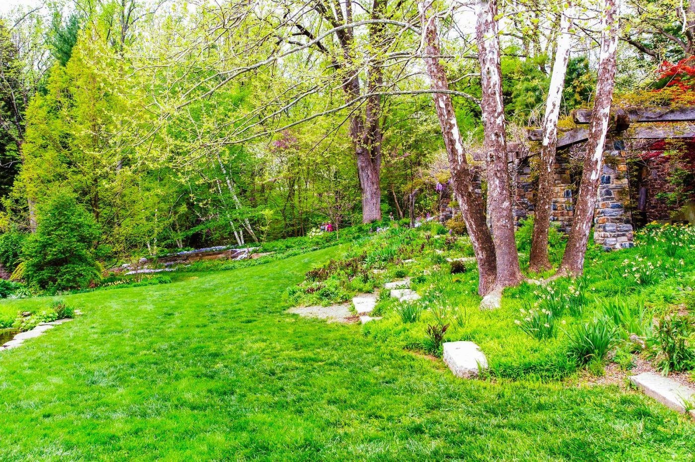 Chanticleer花园,期待春天_图1-29