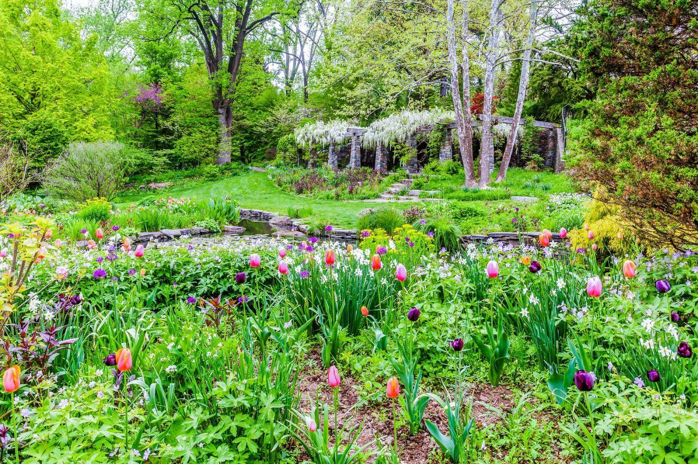 Chanticleer花园,期待春天_图1-33