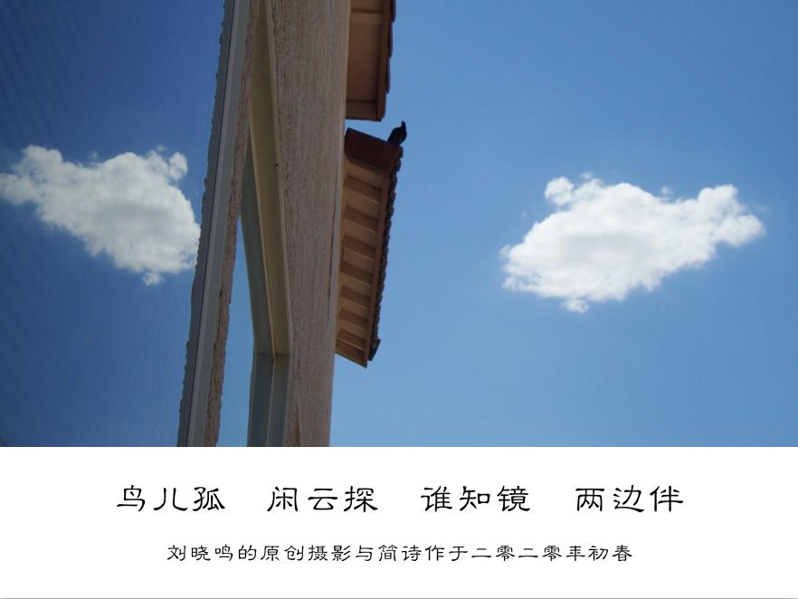 【晓鸣摄影】图文10作_图1-5