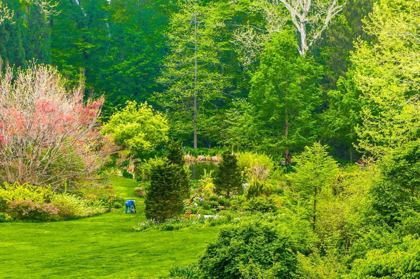 Chanticleer花园,享受大自然_图1-40