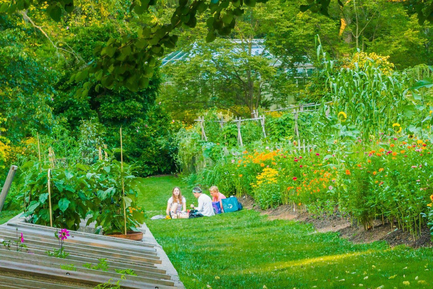 Chanticleer花园,享受大自然_图1-35