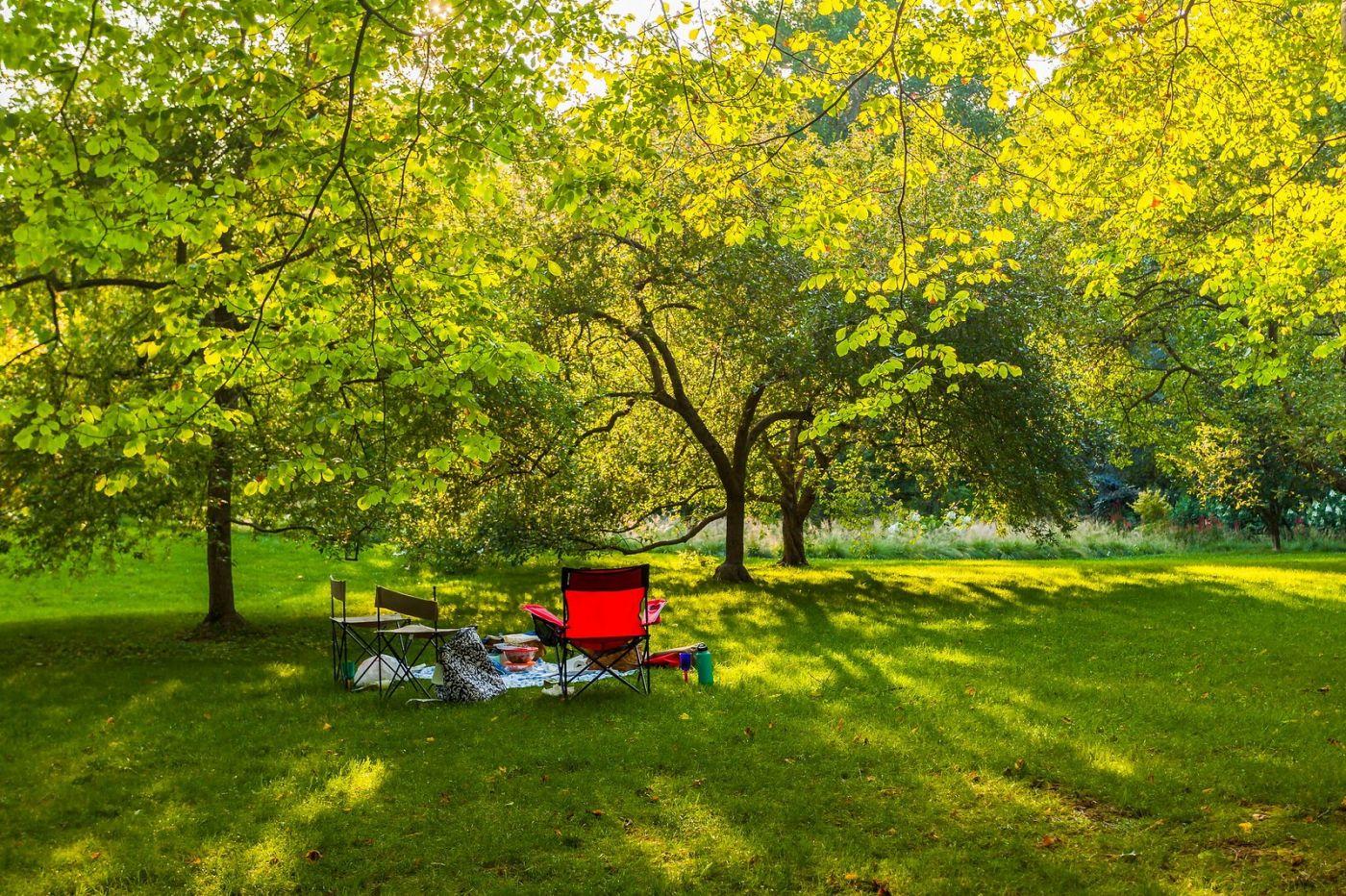 Chanticleer花园,享受大自然_图1-29