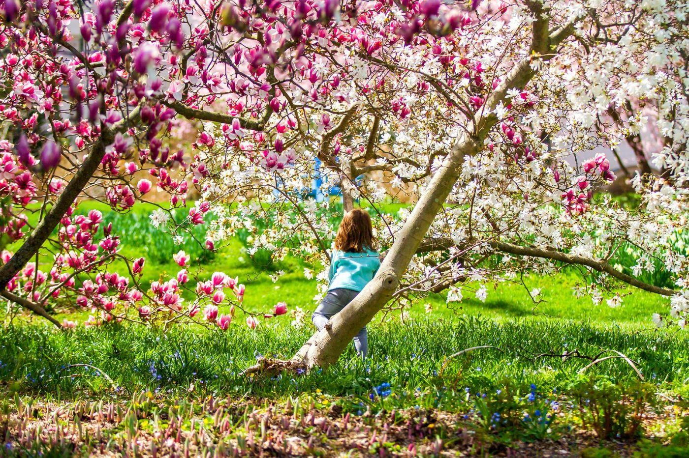 Chanticleer花园,享受大自然_图1-27