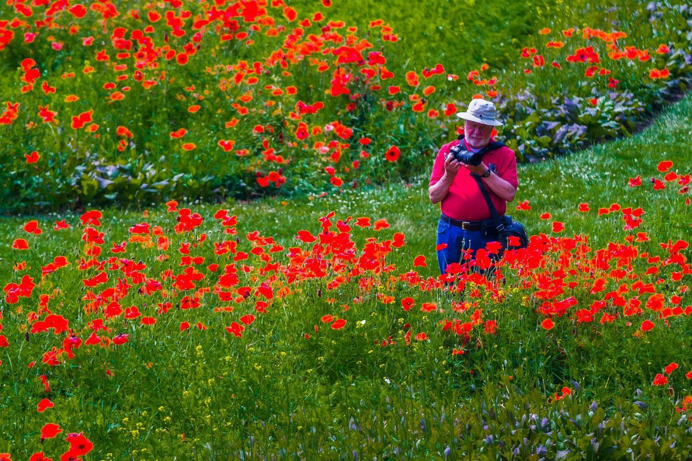 Chanticleer花园,享受大自然_图1-18