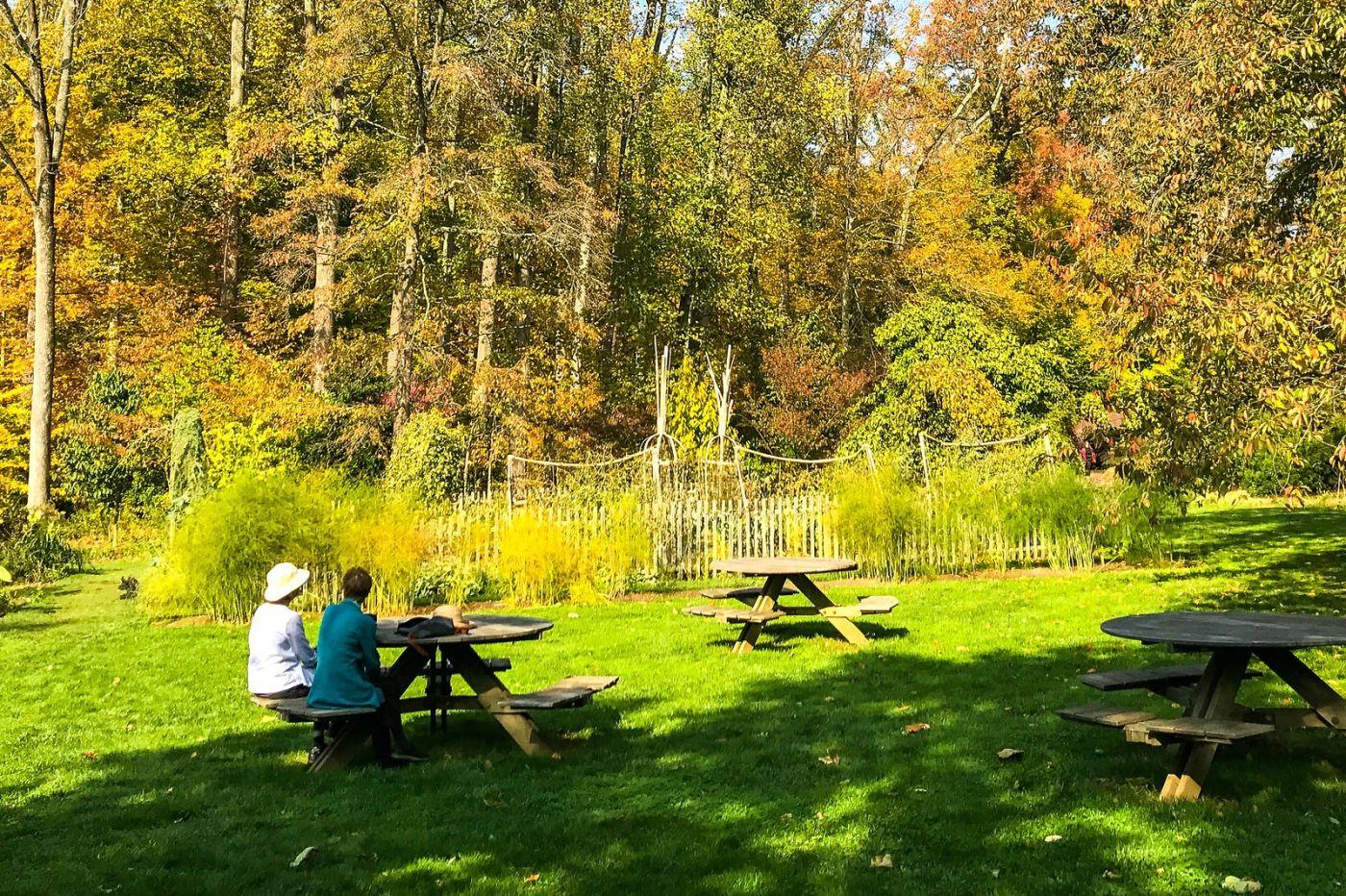 Chanticleer花园,享受大自然_图1-20
