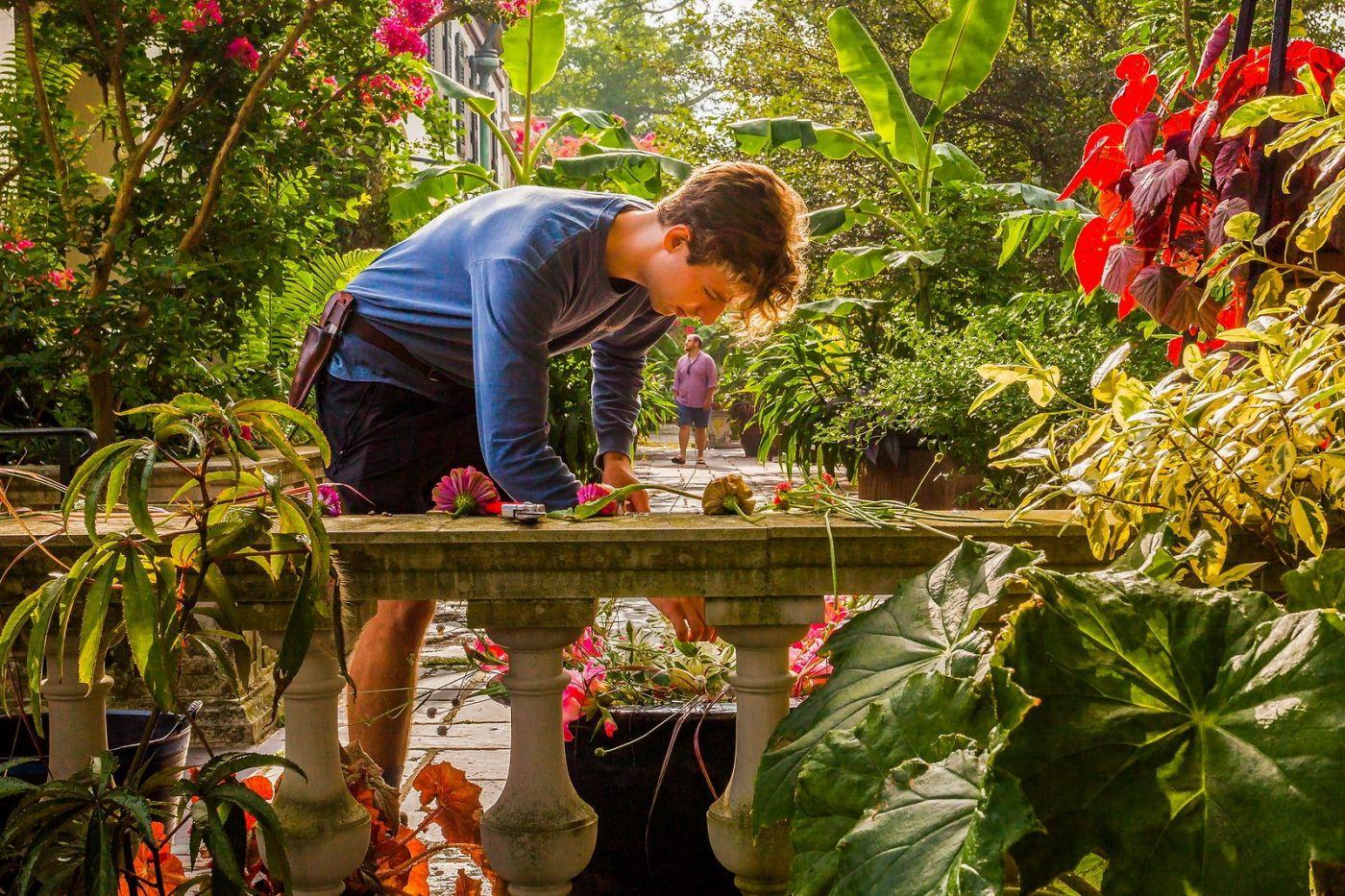 Chanticleer花园,享受大自然_图1-1