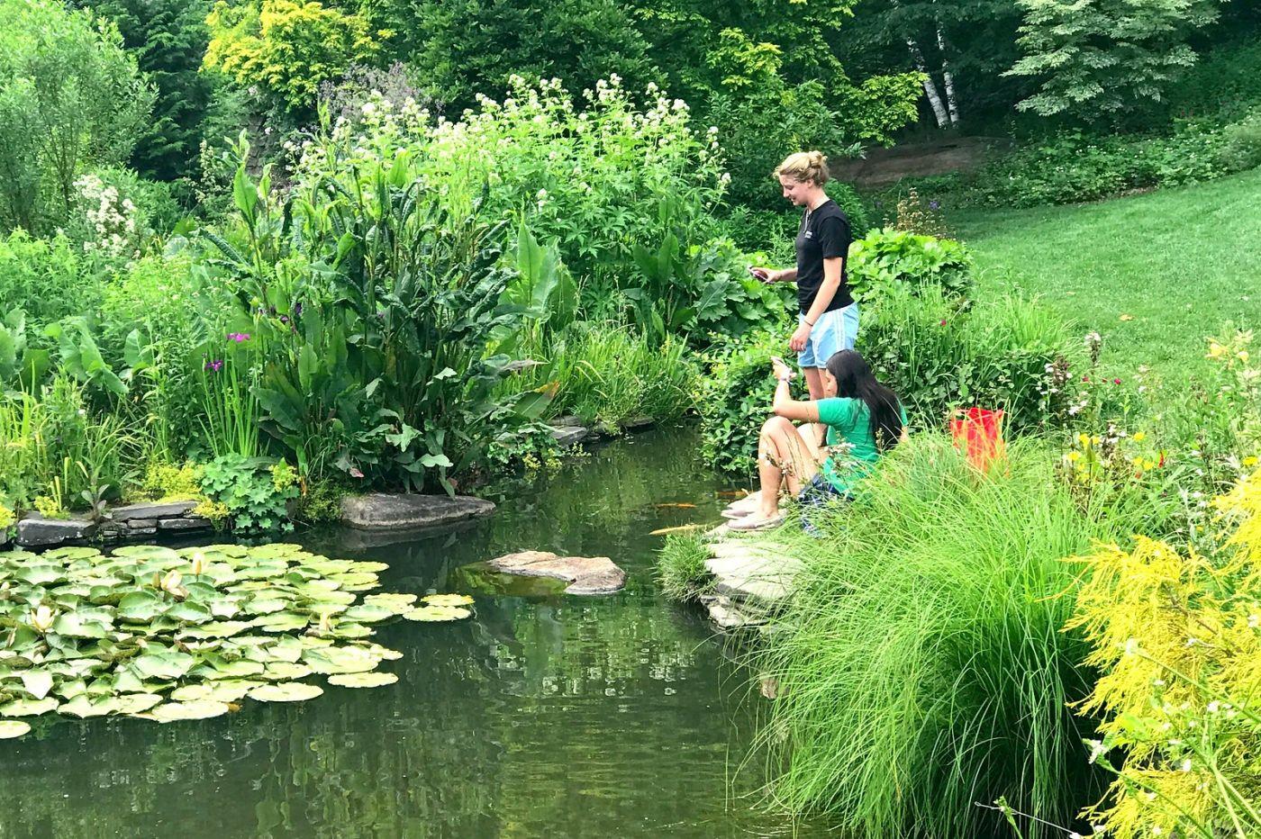 Chanticleer花园,享受大自然_图1-7