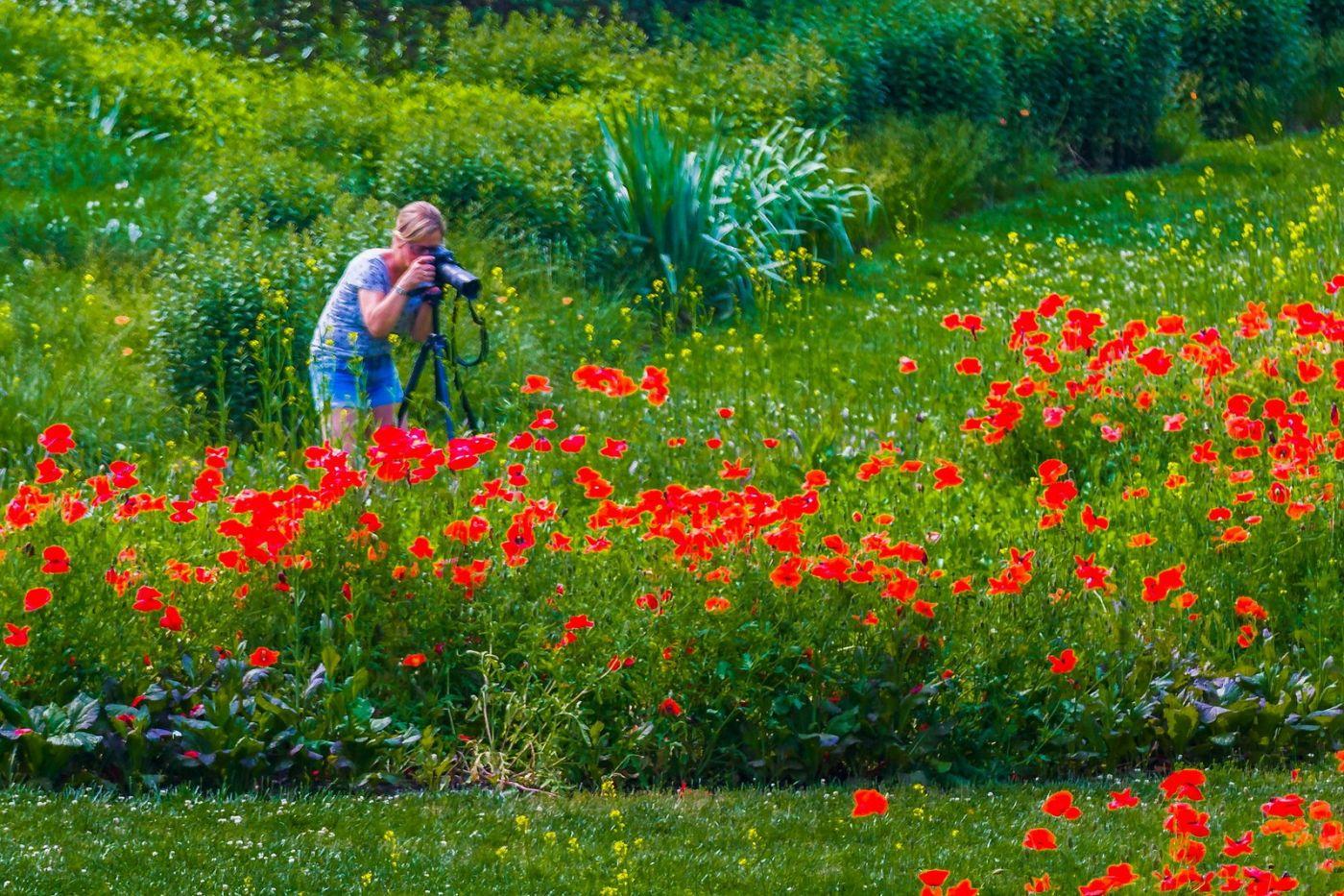Chanticleer花园,享受大自然_图1-5
