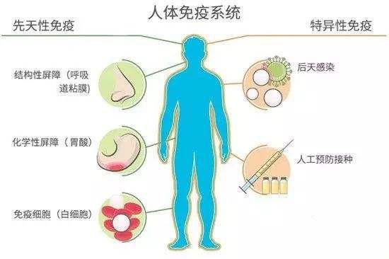 中医药亮剑:疫情阻击战 大道不孤 医养结合必胜_图1-6