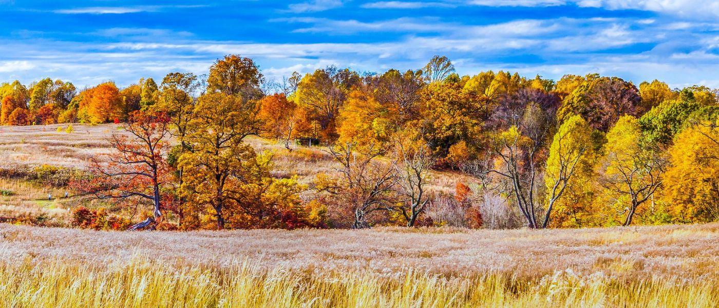 宾州长木公园,季节色彩_图1-40