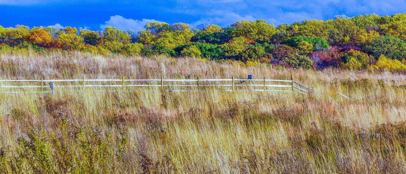 宾州长木公园,季节色彩_图1-38