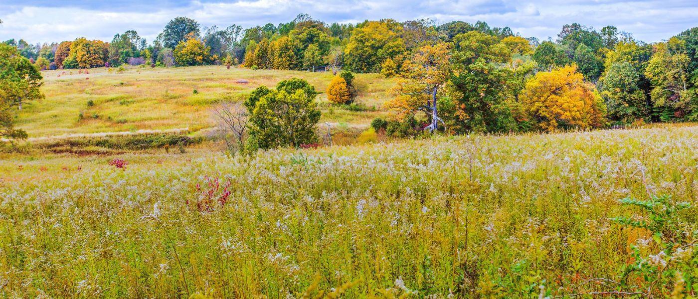 宾州长木公园,季节色彩_图1-34