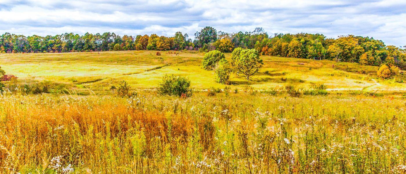 宾州长木公园,季节色彩_图1-31