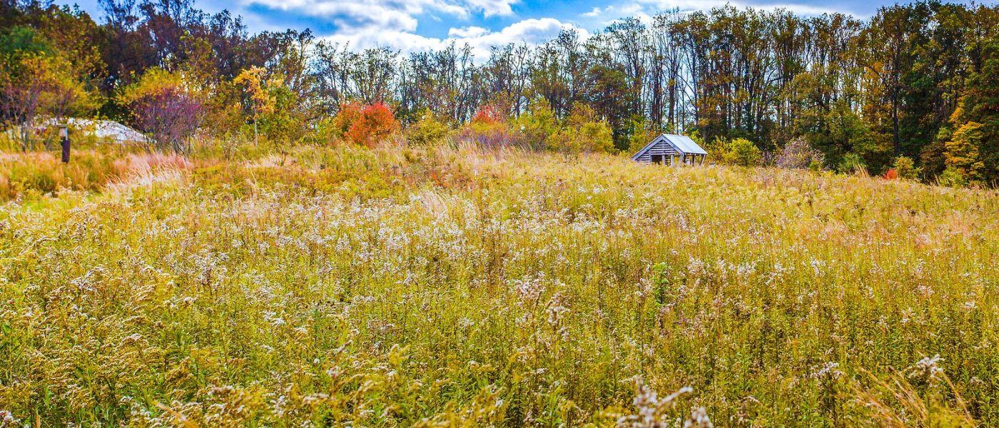 宾州长木公园,季节色彩_图1-25