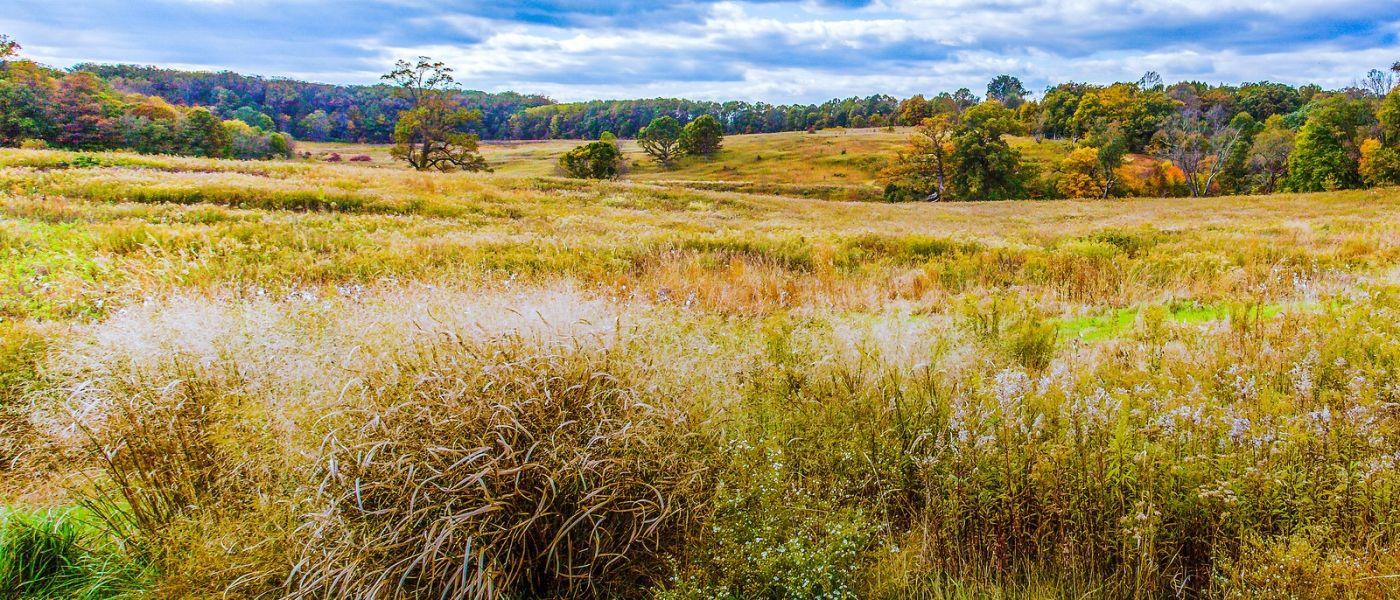 宾州长木公园,季节色彩_图1-26
