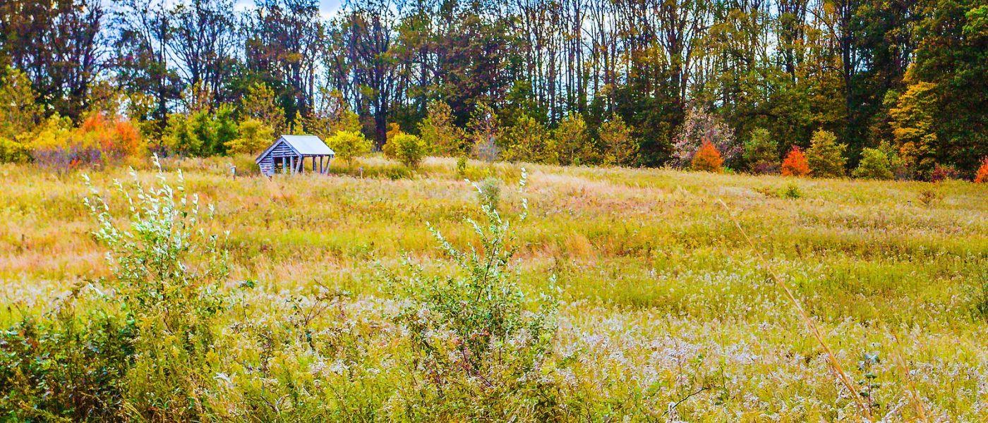 宾州长木公园,季节色彩_图1-27