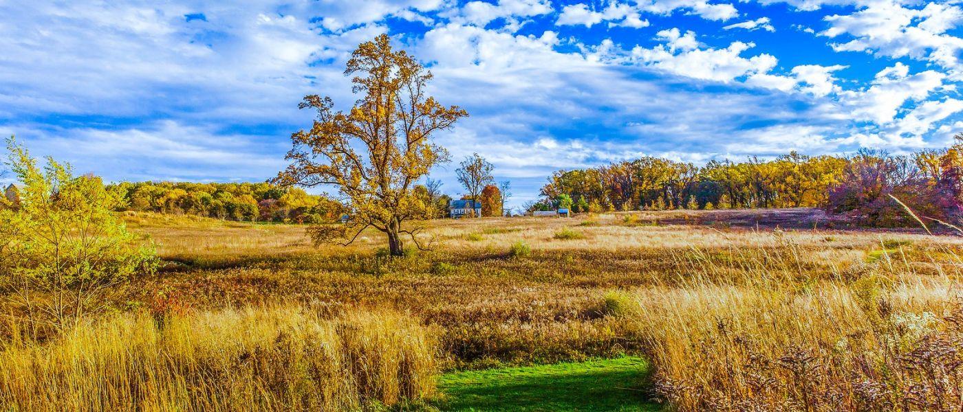 宾州长木公园,季节色彩_图1-24