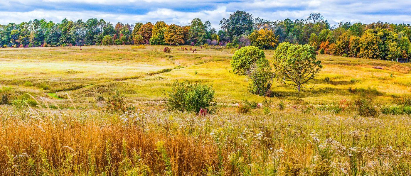 宾州长木公园,季节色彩_图1-23