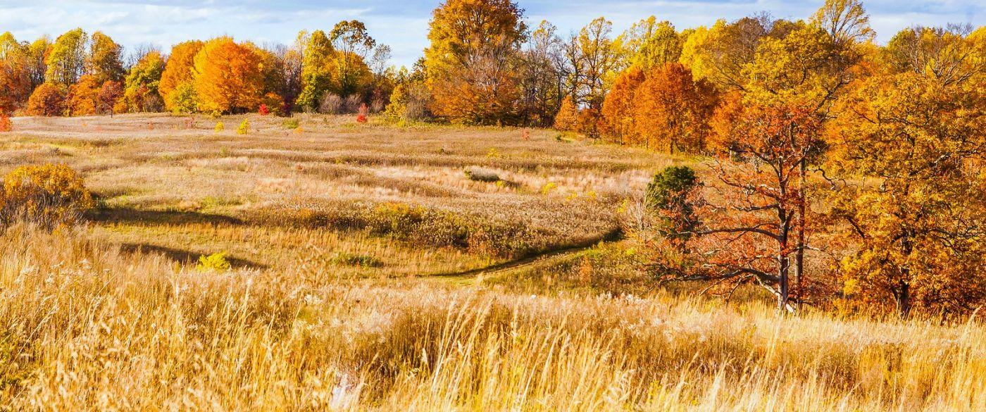 宾州长木公园,季节色彩_图1-22