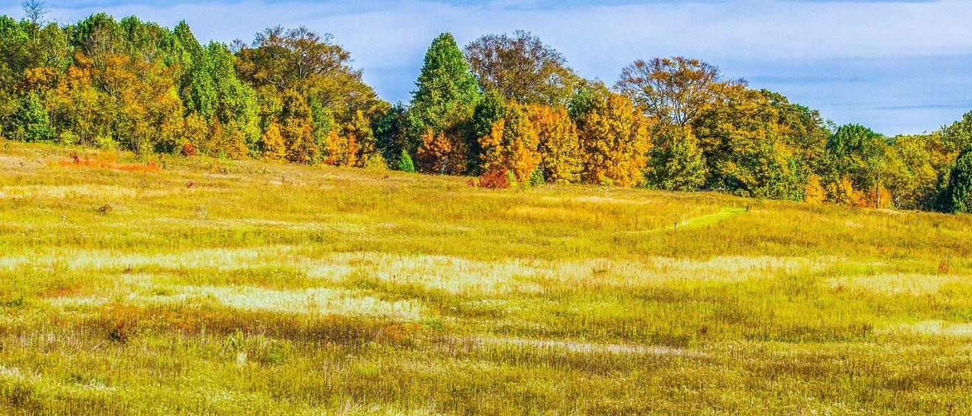 宾州长木公园,季节色彩_图1-21