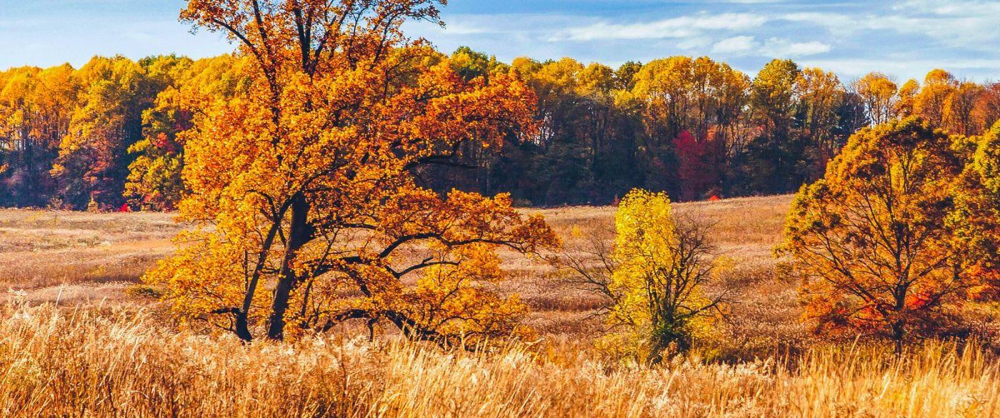 宾州长木公园,季节色彩_图1-3
