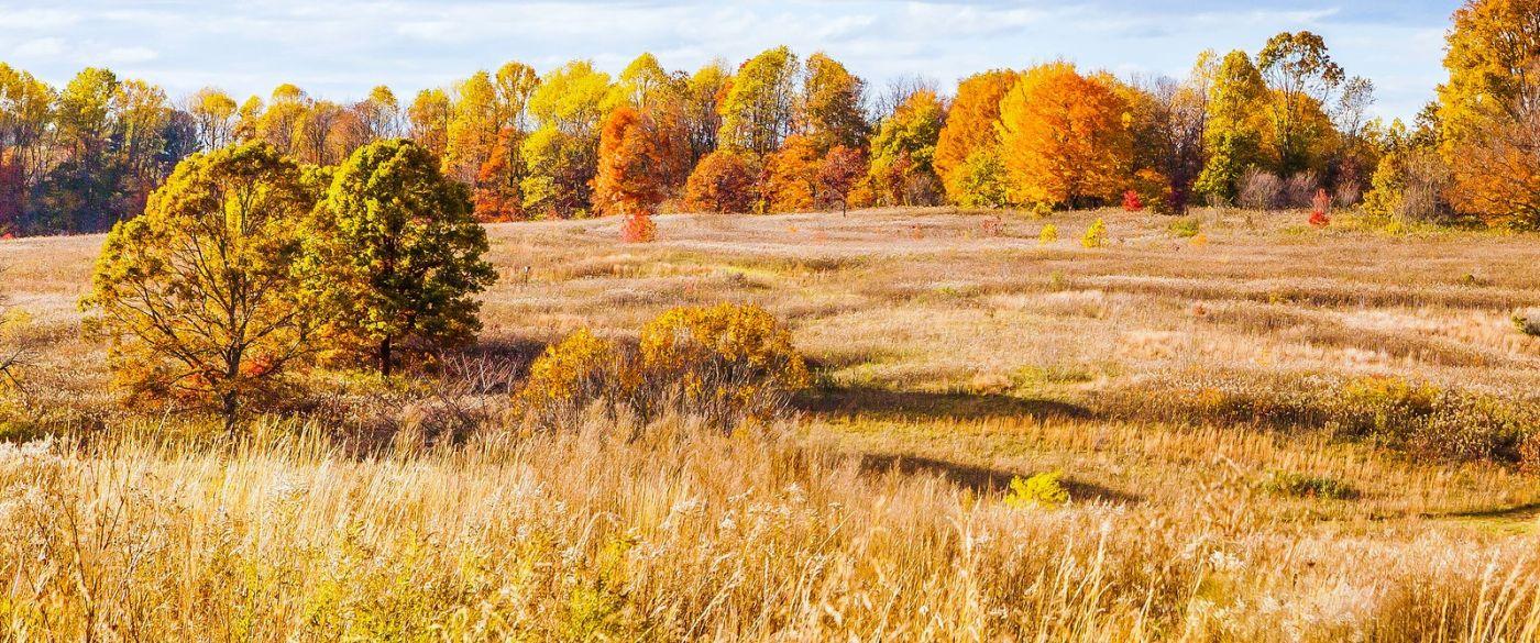 宾州长木公园,季节色彩_图1-2