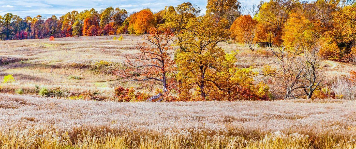 宾州长木公园,季节色彩_图1-4