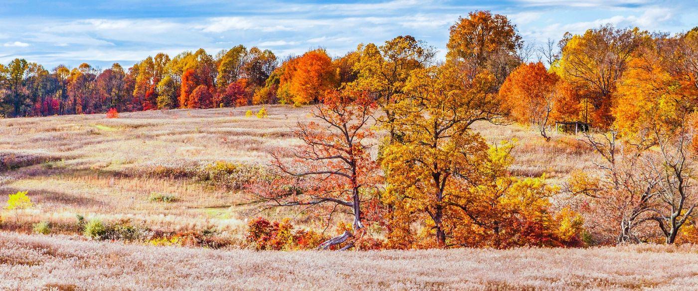 宾州长木公园,季节色彩_图1-1