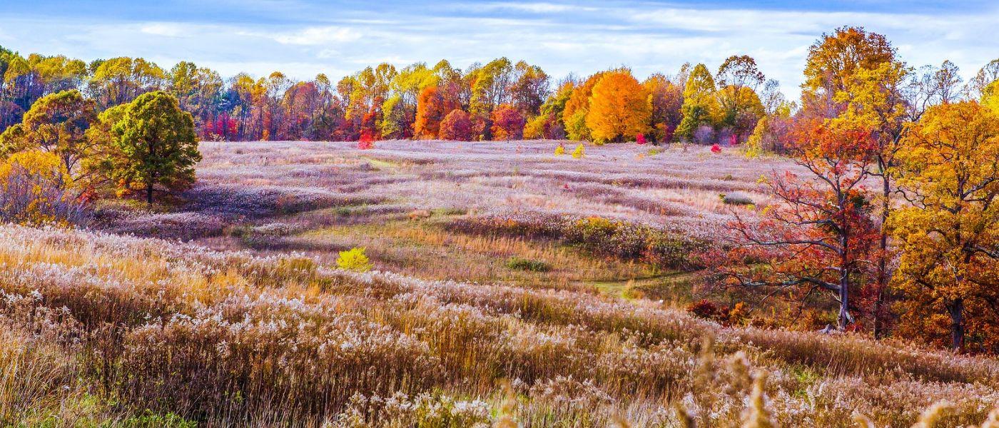 宾州长木公园,季节色彩_图1-5