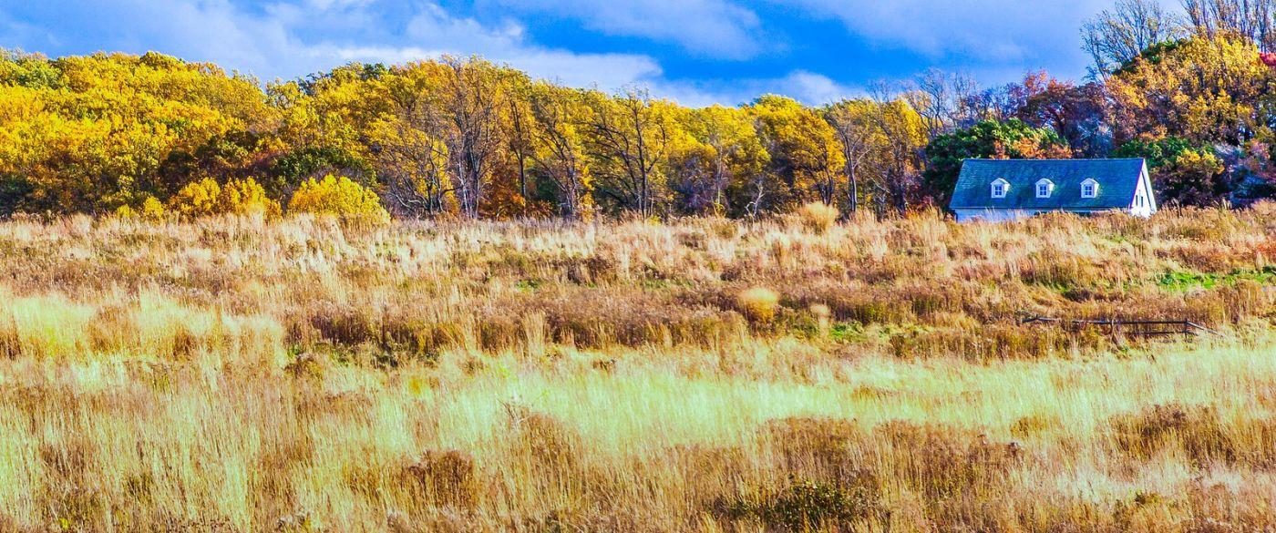 宾州长木公园,季节色彩_图1-10