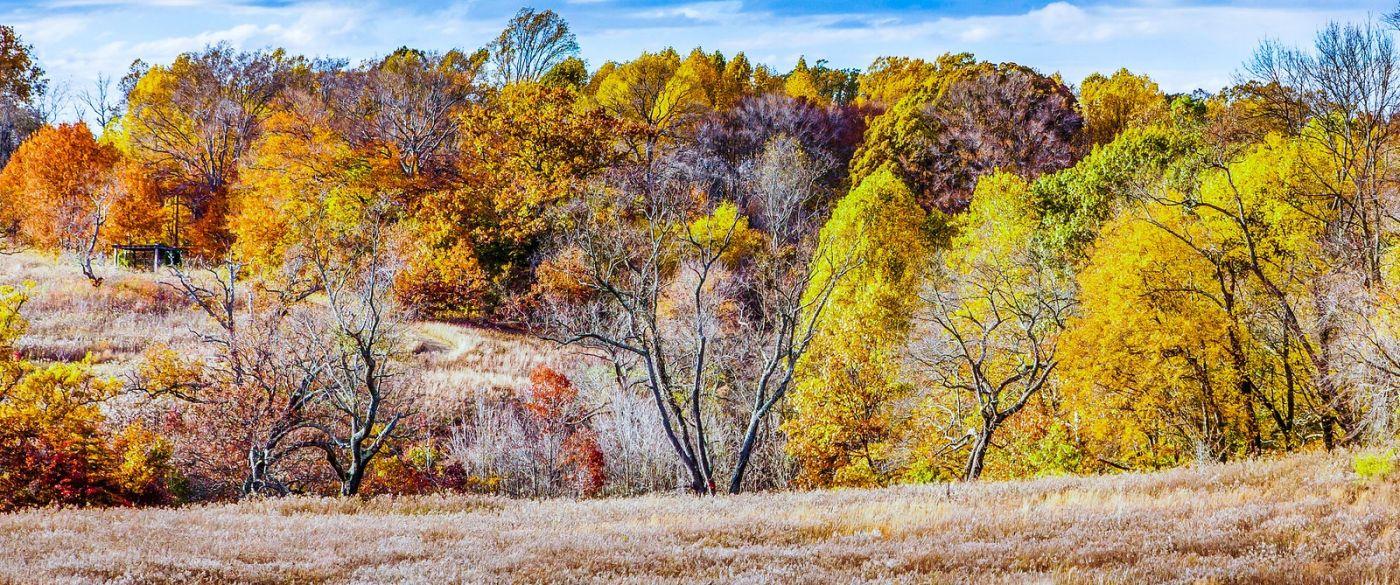 宾州长木公园,季节色彩_图1-12