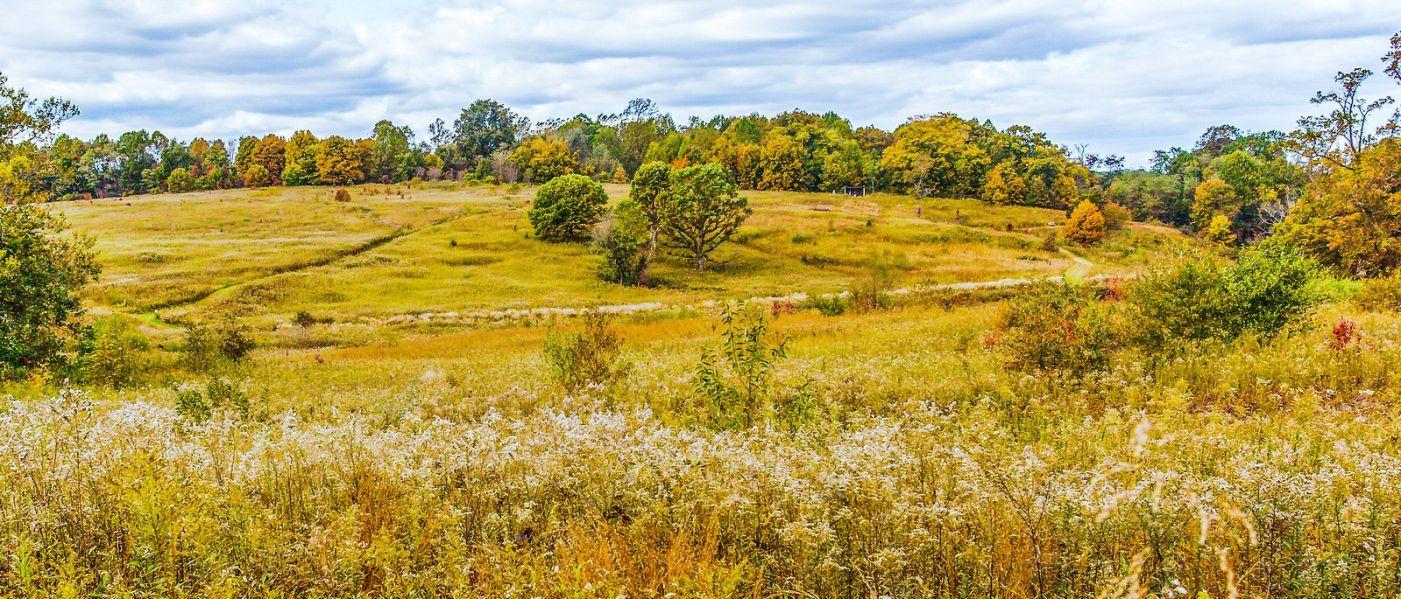 宾州长木公园,季节色彩_图1-11