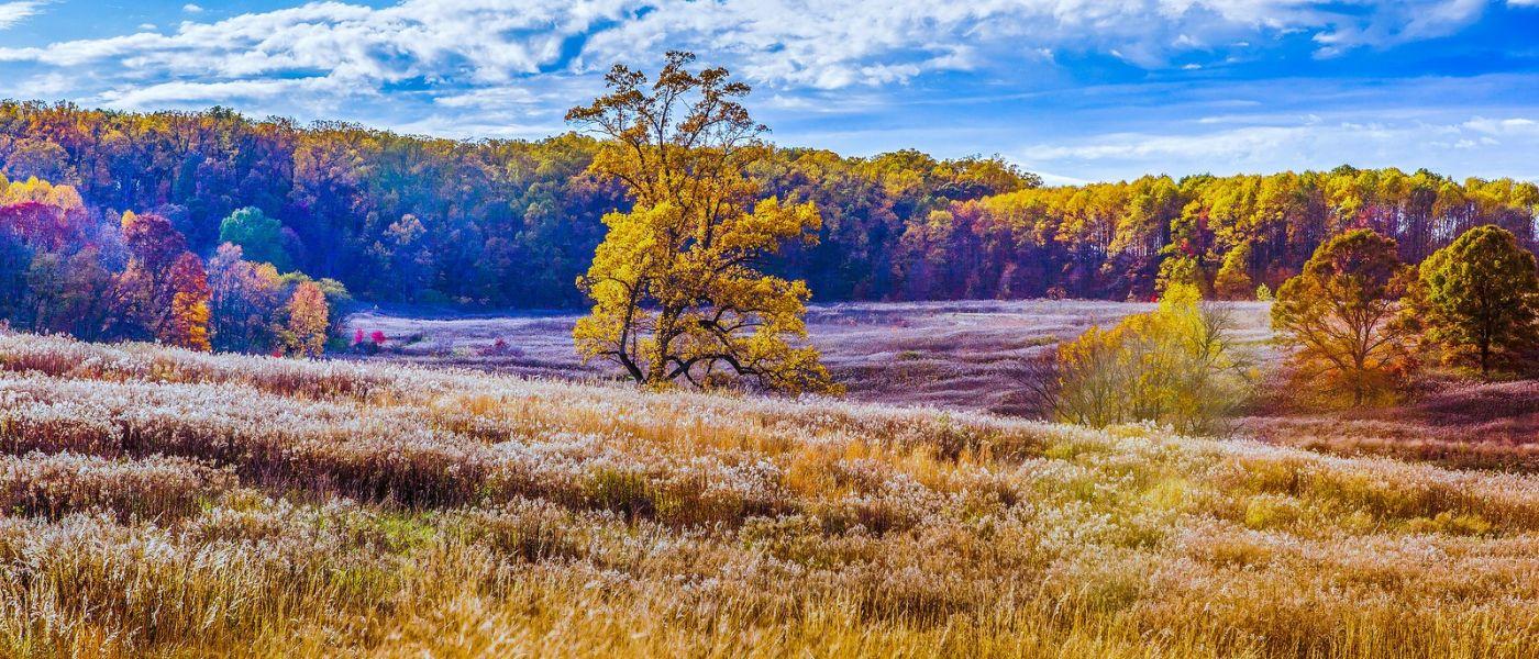 宾州长木公园,季节色彩_图1-9