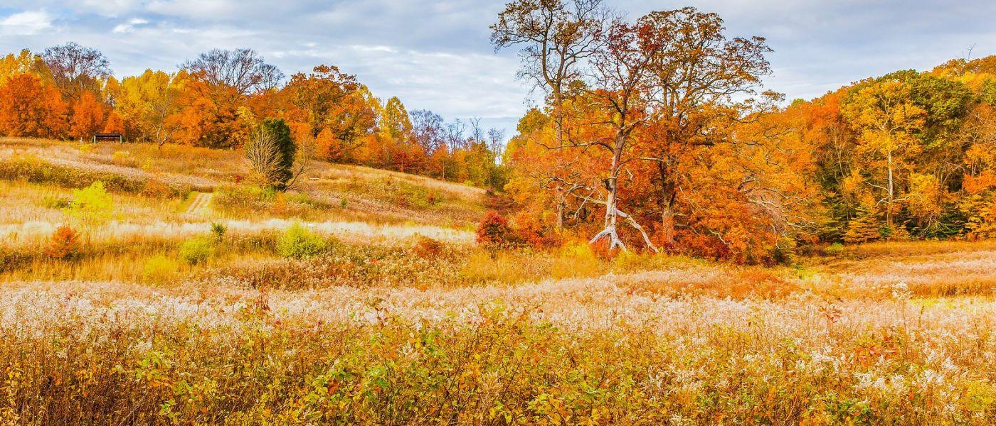 宾州长木公园,季节色彩_图1-16
