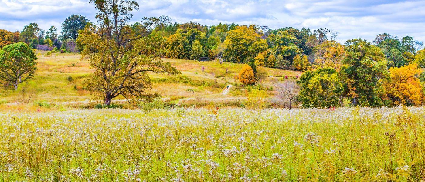 宾州长木公园,季节色彩_图1-14
