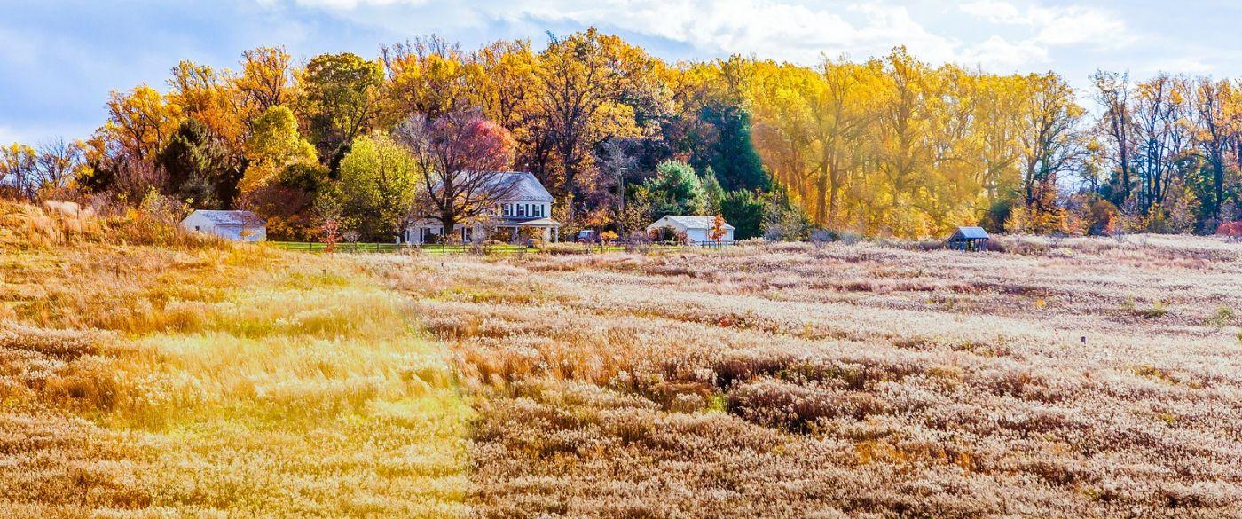 宾州长木公园,季节色彩_图1-18