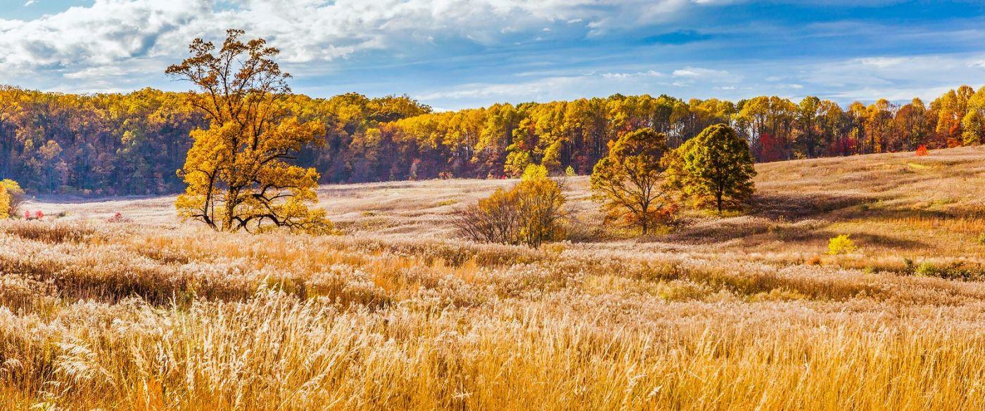 宾州长木公园,季节色彩_图1-20