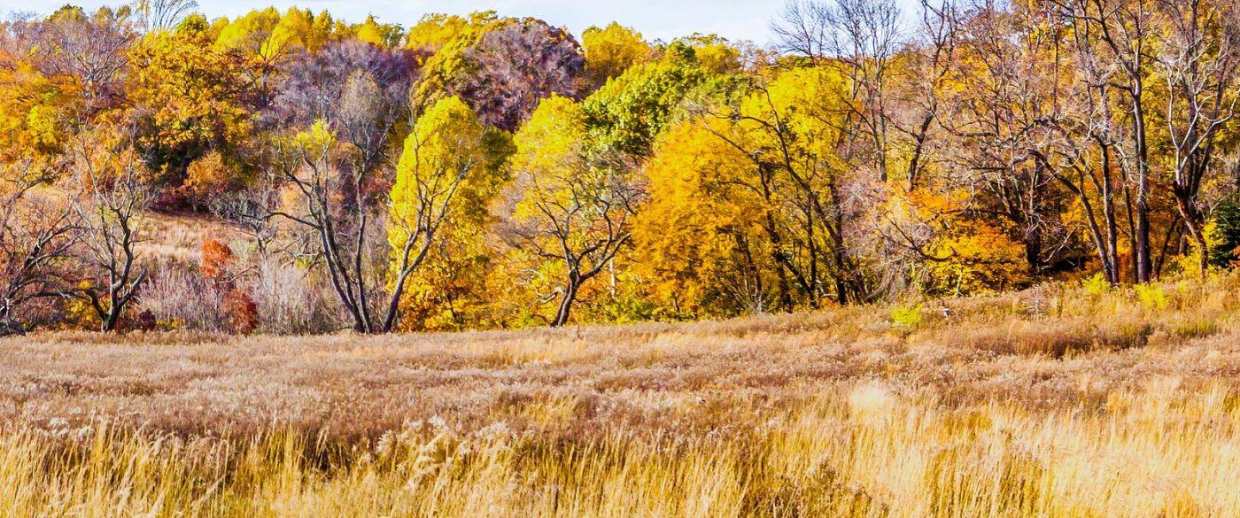 宾州长木公园,季节色彩_图1-19
